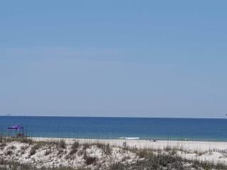 Amazing View of the Beach! Paw Paw's Place, Fort Morgan