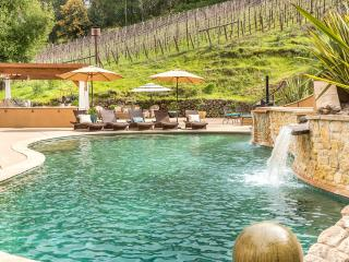 Amazing Backyard, 8 Mins to Healdsburg Plaza