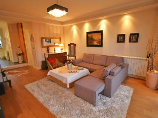 Extremely Rich and pleasantly furnished'Belgrade Rooms No1'