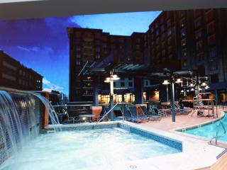 Pres.Reserve 2 Bedroom Condo at National Harbor, Washington DC