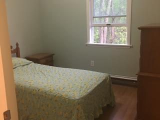 Summer Nightly/Weekly Rentals, Saratoga Springs