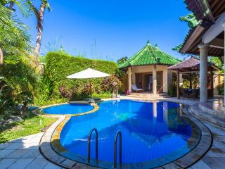 Luxury 2/3 bedroom Villa in Sanur Bali,With Wifi