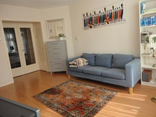 Comfy private appartment in center ring 55m2, Amsterdã