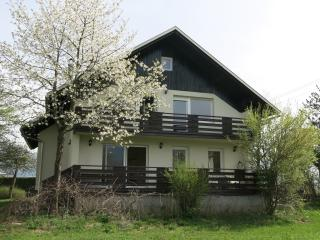 Villa Koritno - Lake Bled