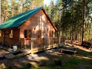 Capercaillie Cabin - 408625, Logie Coldstone