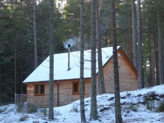 Red Squirrel Lodge - 408640, Logie Coldstone