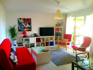 Cannes Center 2bedroms apt with a Large Terrace