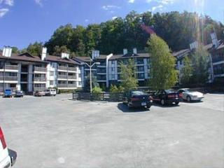 Windy Oaks Condo, Pigeon Forge