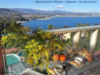 Meublé tourisme 4*, vue panoramique, prk, piscine, Théoule-sur-Mer