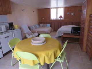 la Birochere Grand et confortable  studio  meuble  Rdc sur terrasse  et  jardin
