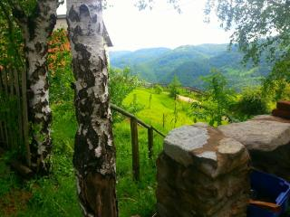 Casa Roger in the lower foothills of the Carpathian Mountains