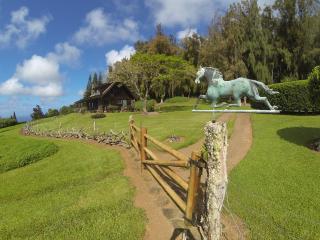 Kohala Lodge - Great private or family getaway..., Hawi