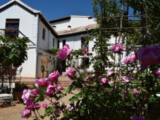 Casa completa con alberca (10 personas max)-Carmen, Granada