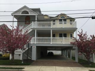 NEW 3 BDR CONDO 1 BLOCK TO BEACH, Margate City