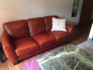 Petite One Bedroom in North Beacon Hill, Seattle
