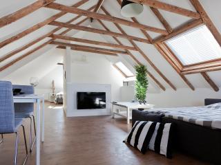 Groningen Centre Apartment