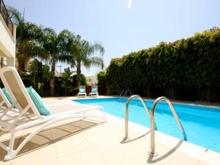 Luxury 2 bedroom villa near Zygi with private pool