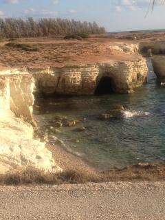 Sea Caves 15 minutes drive away