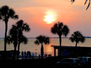Airport, Clearwater, Downtown & Busch Gardens, Tampa