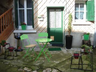 nice  flat, yard, next to centre and Loire river,