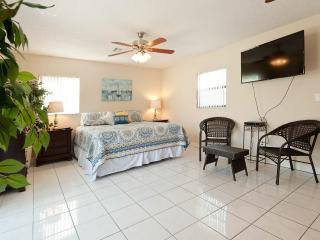 Totally Renovated 1-block-from-beach House, Clearwater