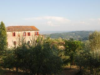 5 bedroom Villa in Capannori, Lucca And Surroundings, Tuscany, Italy : ref, San Pietro a Marcigliano