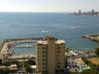 Furnished Sea view Apartment, Jounieh