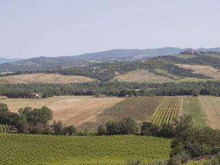 7 bedroom Apartment in Borgo Santa Rita, Siena Area, Tuscany, Italy : ref 2230352, Poggio alle Mura
