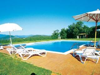 5 bedroom Villa in Radda In Chianti, Siena Area, Tuscany, Italy : ref 2230394