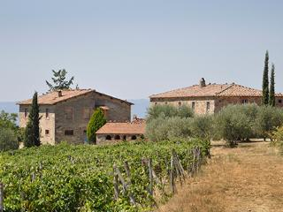11 bedroom Apartment in Castellina In Chianti, Siena Area, Tuscany, Italy : ref 2230405