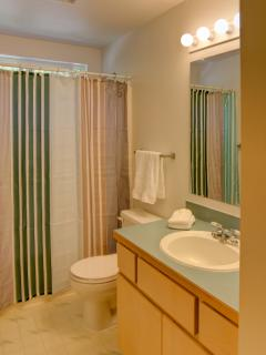 Bathroom with shower/tub