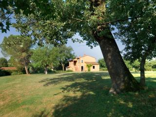 5 bedroom Villa in Siena, Tuscany, Italy : ref 5455315