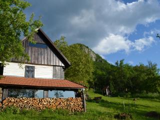 Carpathian Cottage - with Sauna