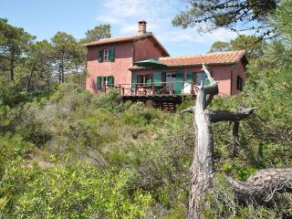 5 bedroom Villa in Castiglione della Pescaia, Tuscany, Italy : ref 5477279