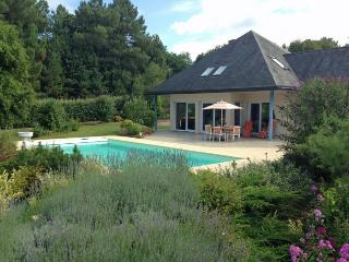3 bedroom Villa in near Saumur, Loire, France : ref 2291532, La Breille-les-Pins