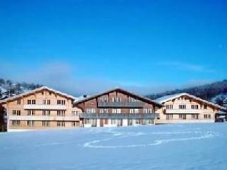 6 bedroom Apartment in Schonried, Bernese Oberland, Switzerland : ref 2297066