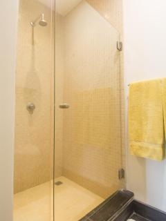 Walk in shower in guest bathroom