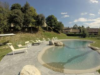 5 bedroom Villa in Selvazzano Dentro, Padua Area, Veneto And Venice, Italy