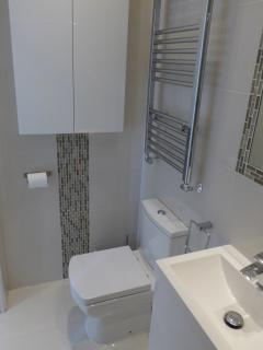 Bathroom 2 - walkin shower