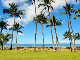 Hale Kai O' Kihei 1 Bedroom Ocean View 108, Waikoloa
