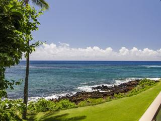 Kuhio Shores 201 *Free Mid-Size Car* Ocean Front Lanai 50 Ft. from Snorkeling