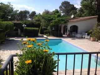 Villa Albert 1 in sunny Provence