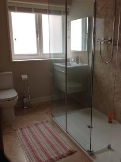 Bathroom with large shower and soft close toilet seat and cupboard
