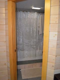 Full Basement Bathroom 2