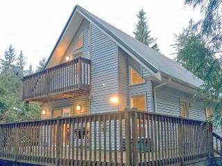96MBR Pet Friendly Cabin near Skiing and Hiking at Mt. Baker, Glacier