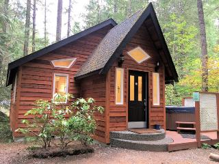 16GS Pet Friendly Cabin with a Private Hot Tub and WiFi, Glacier