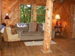 1br - Secluded Cabin on 40 Wooded Acres, Hart