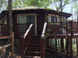 Mid Century Cabin on Walnut Mountain, Ellijay