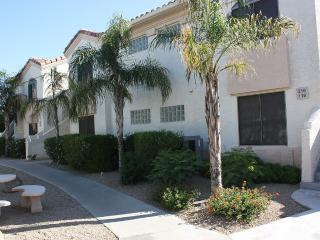 Great Paradise Valley Condo Location