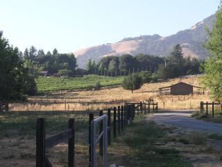 Wine Country Property on Acreage, Santa Rosa